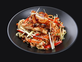 Noodles udon with chicken meat