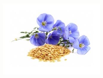 Семена льна, коричневые 1 кг.