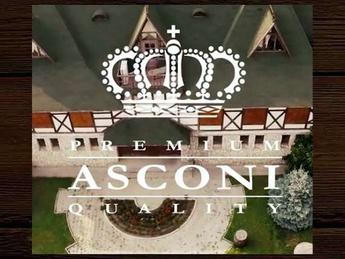 Asconi Merlot