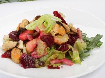 Salad Modera