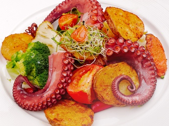 Grilled octopus with baked vegetables