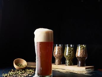 LumenCraft Juniper Ale