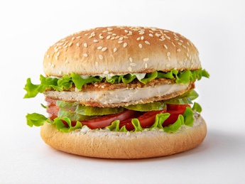 Mr. Snitel Burger