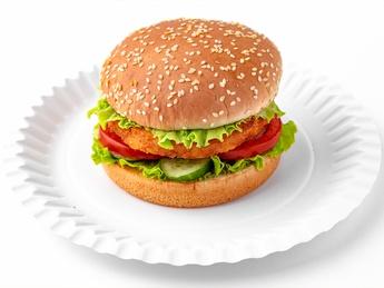Mr. Vegan Burger