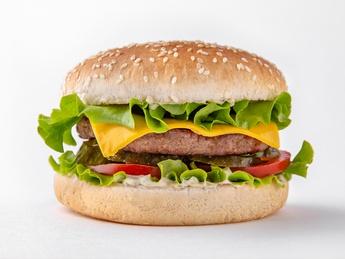 Mr. Cheese Burger